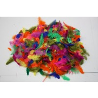 Coloured Feathers (1 for $5 or 3 for $10)