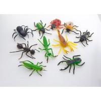 NATURAL WORLD - Insects small